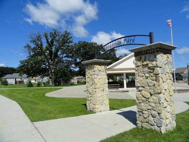 229 Stone Bridge Cir, Deerfield, WI 53531 (#1877573) :: Nicole Charles & Associates, Inc.