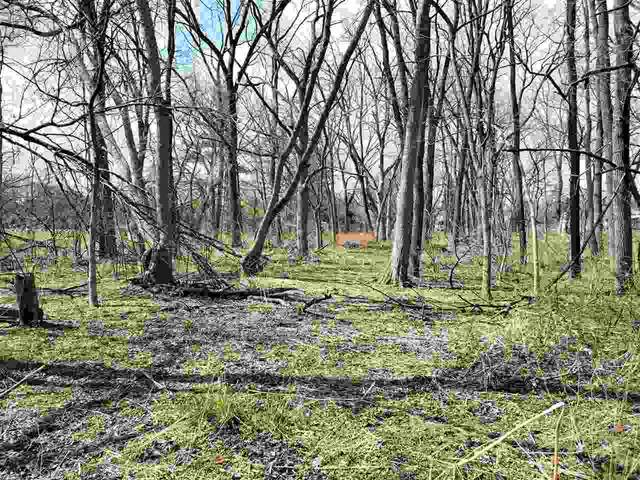 Creek Rd, Turtle, WI 53525 (#1882187) :: HomeTeam4u