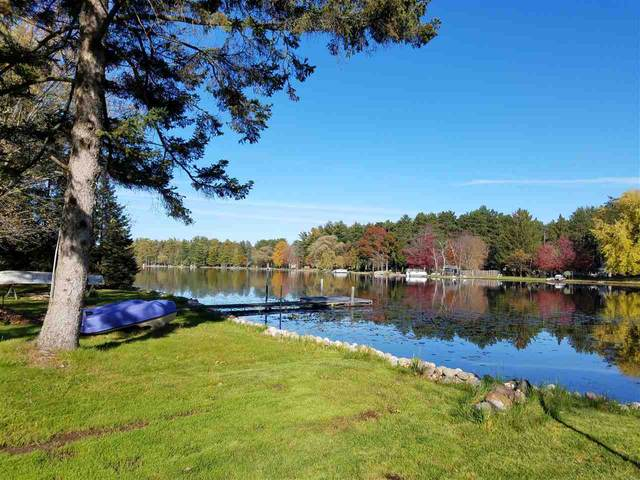 N5406 Lilly Pad Ln, Wild Rose, WI 54984 (#1882308) :: HomeTeam4u