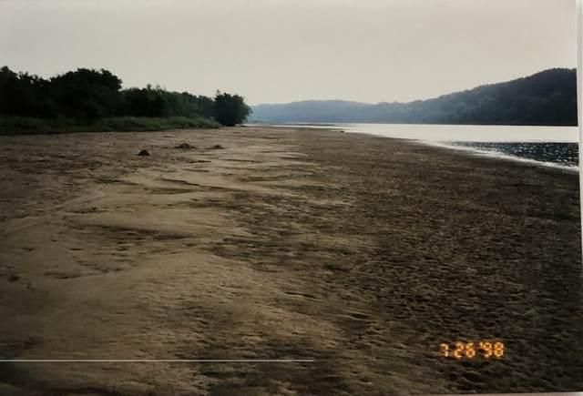 Wisconsin River Island, Delton, WI 53940 (#1883528) :: HomeTeam4u