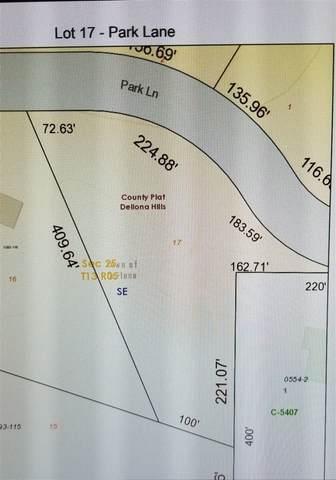 Lot 17 Park Ln, Dellona, WI 53965 (#1884106) :: Nicole Charles & Associates, Inc.