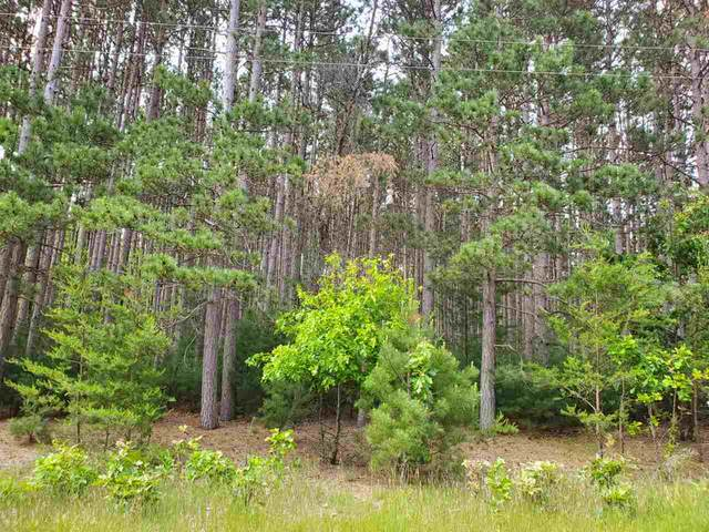 Lot 88 S Gale Ct, Dell Prairie, WI 53965 (#1885906) :: HomeTeam4u