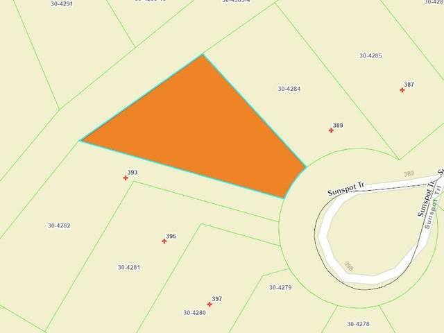 391 Sunspot Tr, Rome, WI 54457 (#1887163) :: Nicole Charles & Associates, Inc.