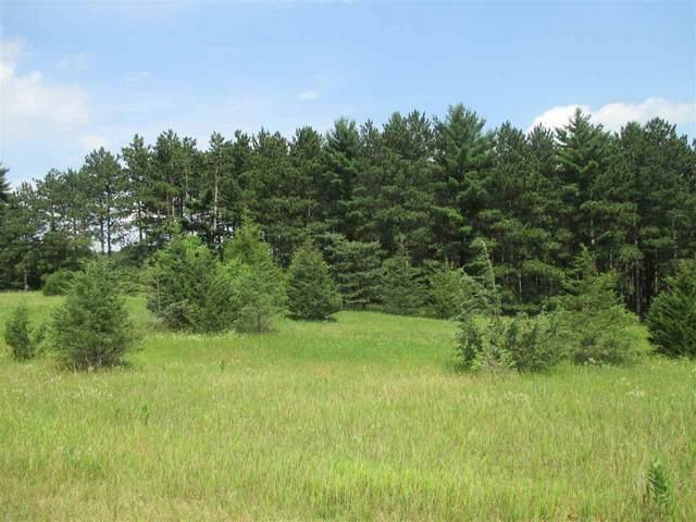 L82 & L83 Golf Ridge Dr, Mecan, WI 53949 (#1887924) :: HomeTeam4u