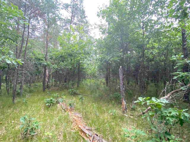 1.76 Acres Johnsburg Rd, Necedah, WI 54646 (#1888547) :: HomeTeam4u