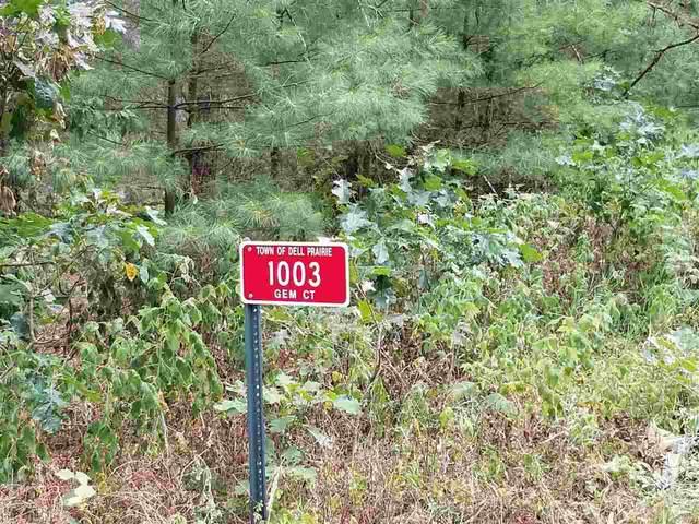 1003 Gem Ct, Dell Prairie, WI 53965 (#1890948) :: HomeTeam4u