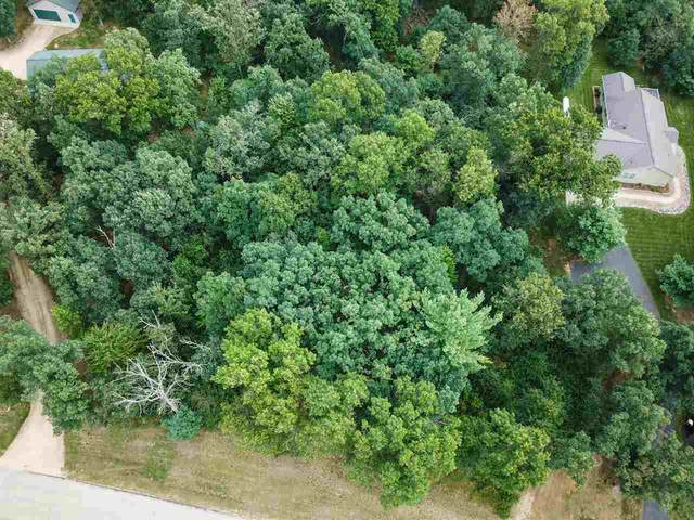 L23 N Timber Bay Ave, Quincy, WI 53934 (#1891762) :: Nicole Charles & Associates, Inc.