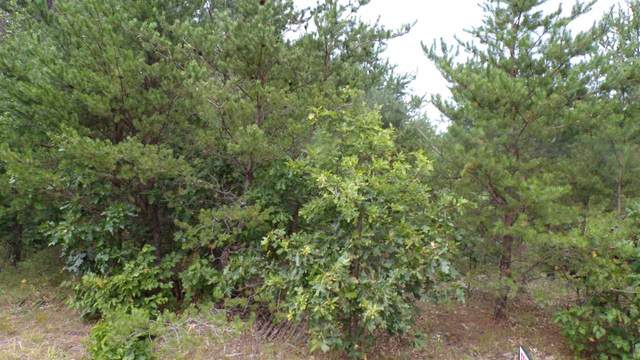 Lot#2 CSM 10757 Blue Ridge Ln, Saratoga, WI 54457 (#1891843) :: HomeTeam4u