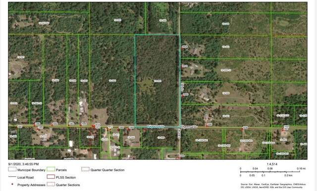 20 Acres Edgewood Dr, Easton, WI 53910 (#1892444) :: Nicole Charles & Associates, Inc.