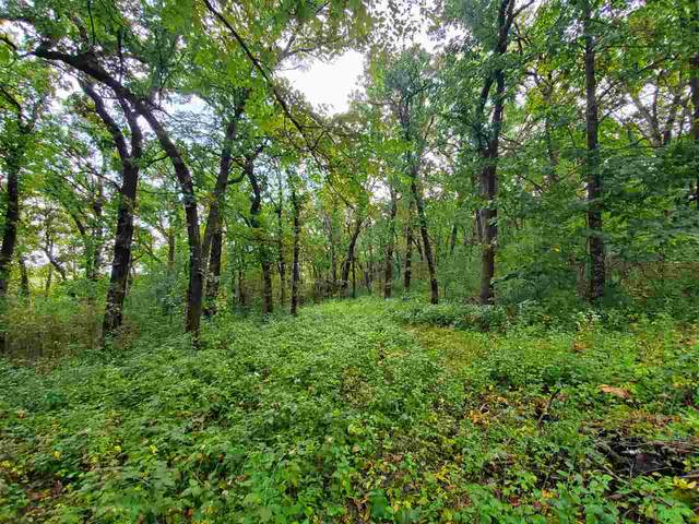 Lot 1 County Road E, Blue Mounds, WI 53517 (#1895663) :: HomeTeam4u