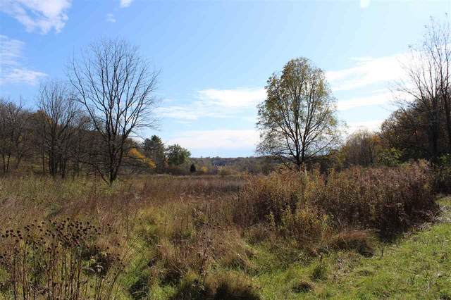 10 Ac Meadow Brook Rd, Adams, WI 53504 (#1895838) :: HomeTeam4u