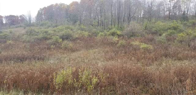 L276 W Dutch Hollow Rd, Woodland, WI 53941 (#1896589) :: HomeTeam4u