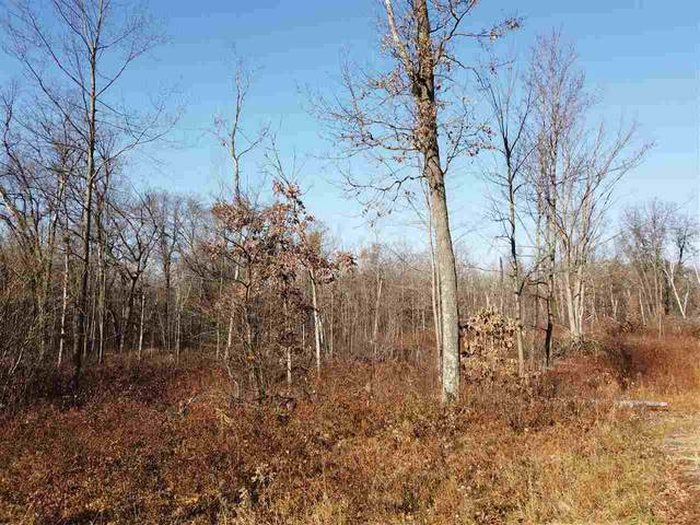 Lot 15 Dickerson Ave, Foster, WI 54493 (#1897668) :: Nicole Charles & Associates, Inc.