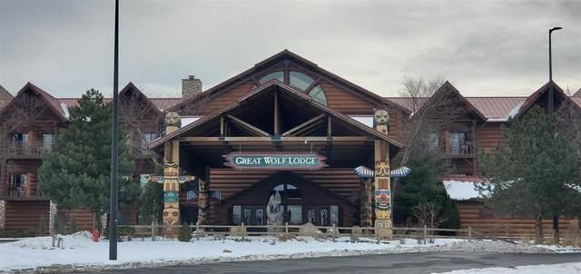 1400 Great Wolf Dr, Lake Delton, WI 53965 (#1900594) :: HomeTeam4u