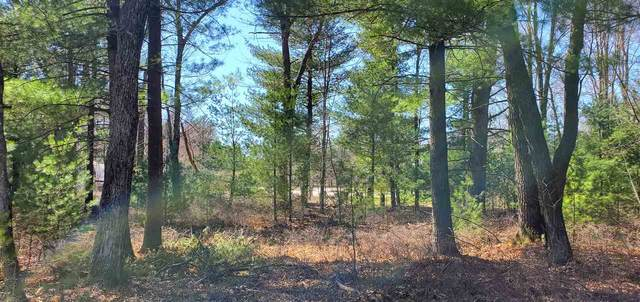 330 Pine Meadow Ct, Lake Delton, WI 53965 (#1900598) :: HomeTeam4u