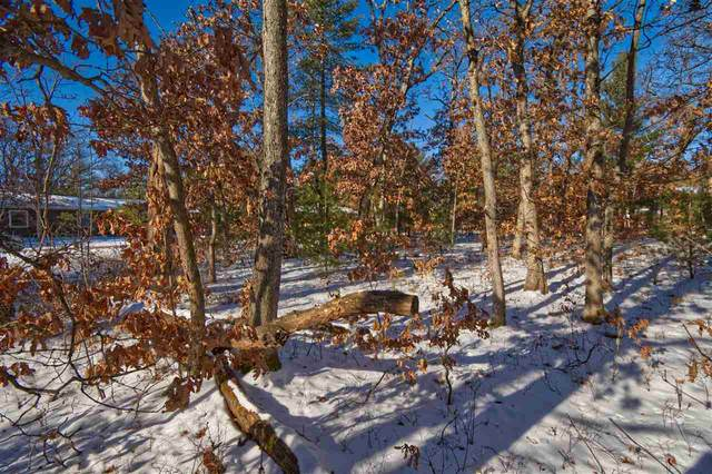 288 Dogwood Ln, Lake Delton, WI 53965 (#1901043) :: Nicole Charles & Associates, Inc.