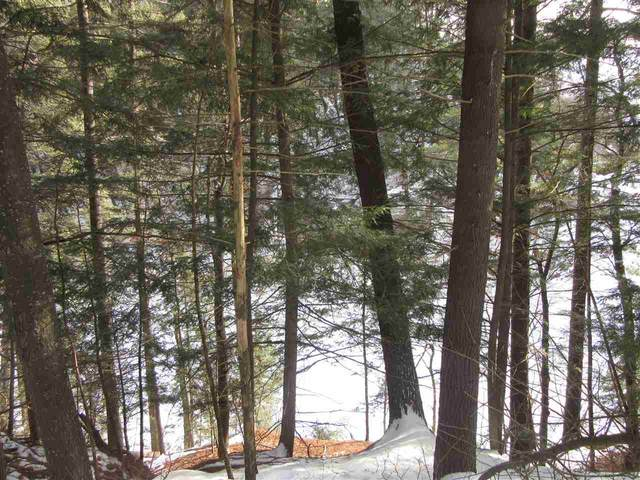 2.82 Ac White Birch Dr, Delton, WI 53965 (#1903027) :: HomeTeam4u