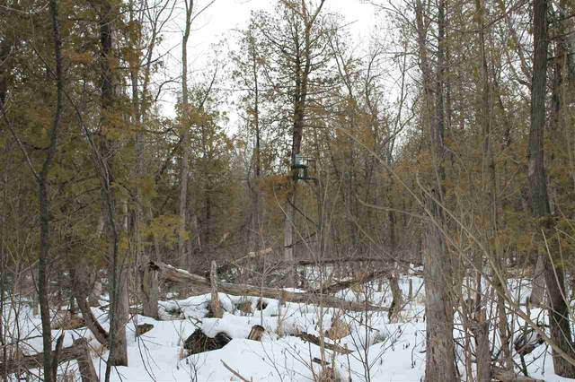 Banner Rd, Forest, WI 53057 (#1903064) :: RE/MAX Shine