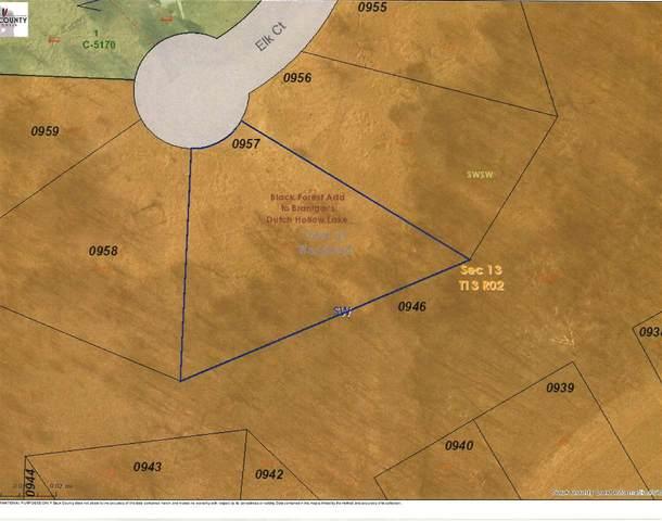 Lot 174 Elk Ct, Woodland, WI 53941 (#1904430) :: HomeTeam4u