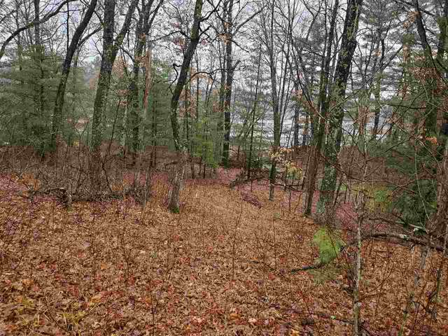 Lot 253 Dakota Junction, Strongs Prairie, WI 53934 (#1904964) :: HomeTeam4u
