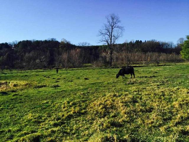 35 Ac Crist Ln, Willow Springs, WI 53530 (#1907289) :: RE/MAX Shine
