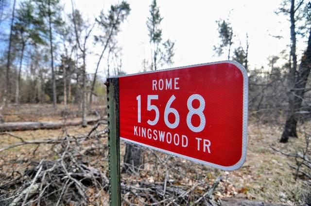 1568 Kingswood Trl, Rome, WI 54457 (#1908500) :: HomeTeam4u