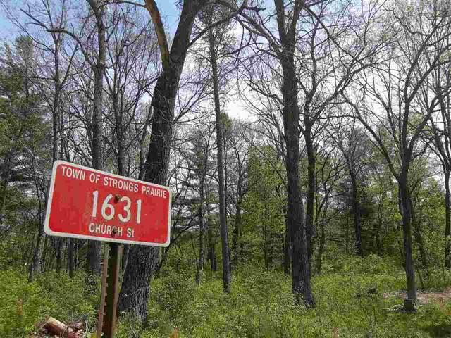 1631 Church St, Strongs Prairie, WI 54613 (#1909227) :: HomeTeam4u