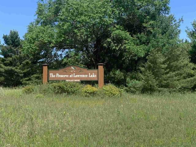 Lot 16 Dahlke Dr, Westfield, WI 53964 (#1911467) :: RE/MAX Shine