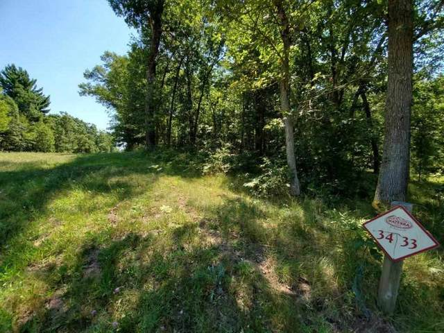 Lot 34 N Timber Bay Ave, Quincy, WI 53934 (#1912239) :: RE/MAX Shine