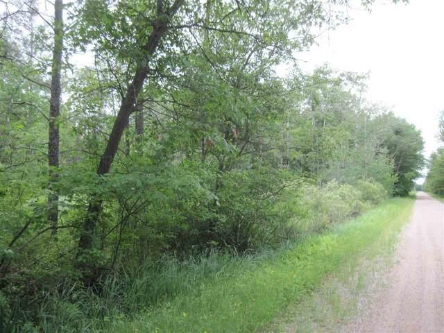 L13 Badger Ave, Colburn, WI 54943 (#1912540) :: RE/MAX Shine