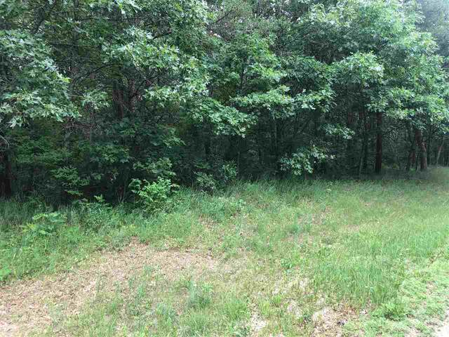 8 Ac County Road G, Necedah, WI 54646 (#1913144) :: RE/MAX Shine