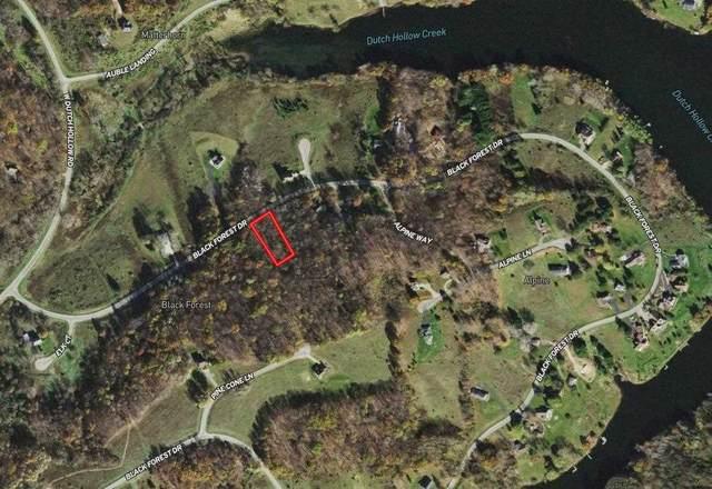 Lot 165 Black Forest Dr, Woodland, WI 53968 (#1913288) :: HomeTeam4u