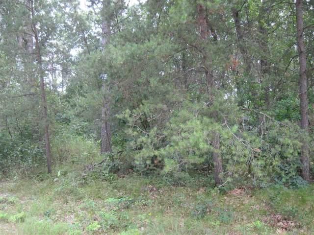 L24 N Duck Creek Ct, Adams, WI 53934 (#1915184) :: RE/MAX Shine