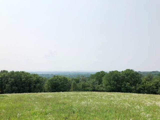 31.81 acres Hilldale Road, Marietta, WI 53826 (#1916625) :: RE/MAX Shine