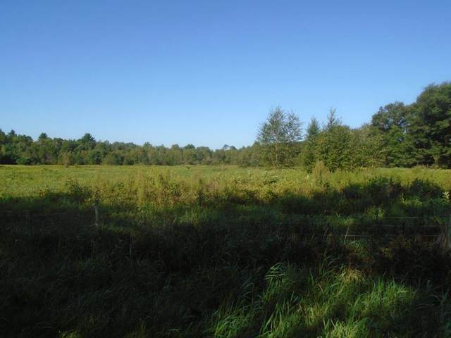 16.73 Ac 7th Ave, Necedah, WI 54646 (#1917694) :: RE/MAX Shine
