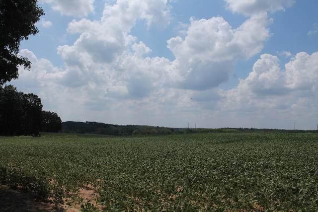 36.5 acres Dunn Ln, Crystal Lake, WI 53960 (#1917901) :: RE/MAX Shine