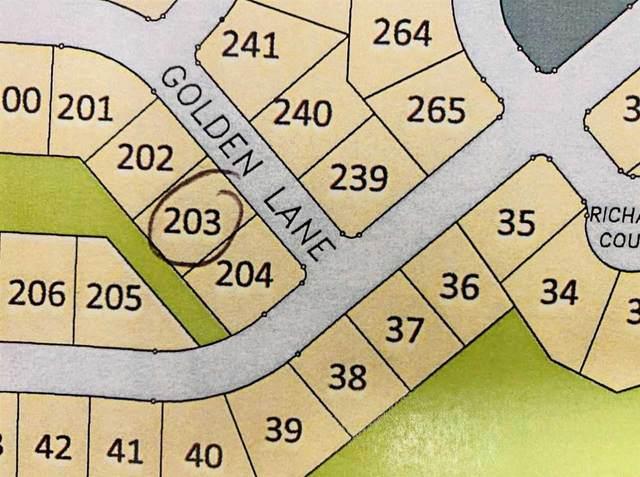 L203 Golden Ln, Waunakee, WI 53597 (#1918367) :: RE/MAX Shine