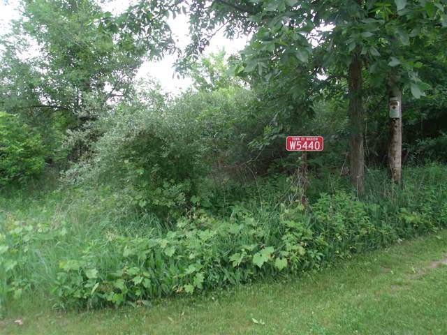 W5440 County Road F, Marion, WI 54960 (#1920114) :: RE/MAX Shine