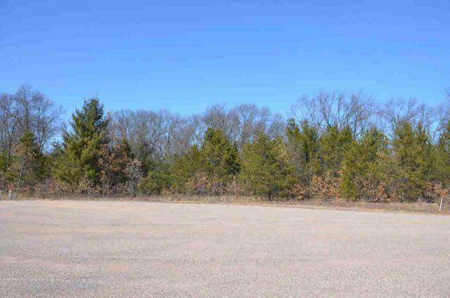 L22 Forkhorn Ct, Germantown, WI 53950 (#353666) :: Nicole Charles & Associates, Inc.