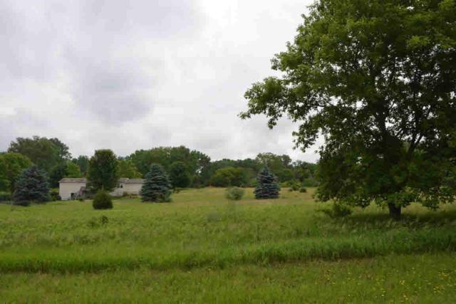 Lot 10, 11 Lakeview Dr, Brooklyn, WI 54941 (#355119) :: Nicole Charles & Associates, Inc.