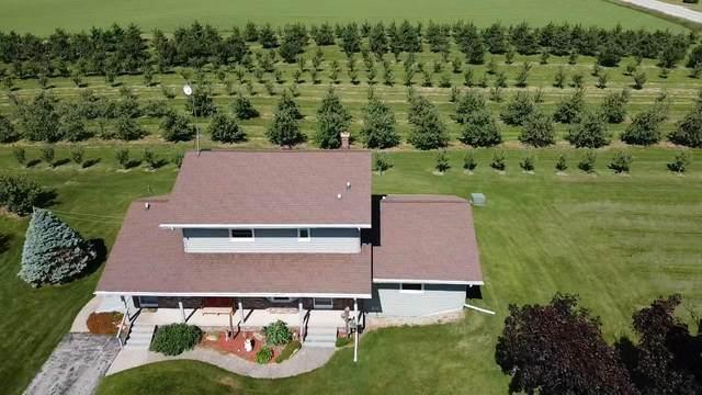 W2423 State Road 49, Lomira, WI 53006 (#369192) :: Nicole Charles & Associates, Inc.