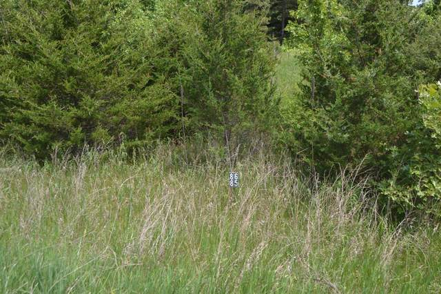 Lt86 Golf Ridge Rd, Mecan, WI 53949 (#376070) :: HomeTeam4u
