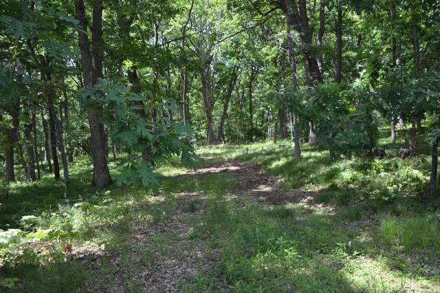 Lt106 Golf Ridge Rd, Mecan, WI 53949 (#376074) :: HomeTeam4u