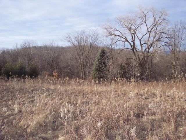 20674 Big Timber Rd, Eastman, WI 54626 (#1693061) :: HomeTeam4u