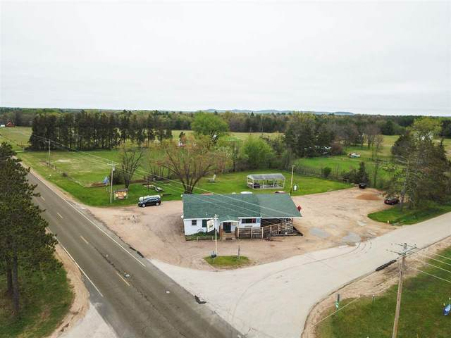 N4902 County Road Hh, Marion, WI 53948 (#1810559) :: Nicole Charles & Associates, Inc.