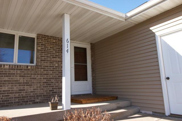 614 Prairie Hills Dr, Dodgeville, WI 53533 (#1821467) :: Nicole Charles & Associates, Inc.