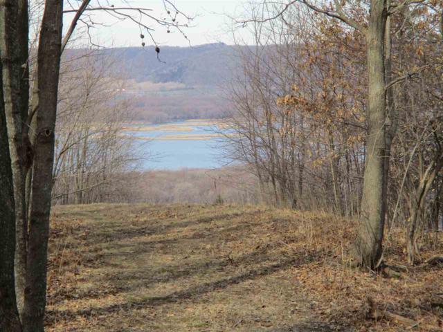 L45 Desoto Ridge Dr, De Soto, WI 54624 (#1821602) :: HomeTeam4u