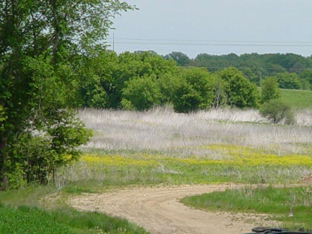 315 Whitetail Way, Deerfield, WI 53531 (#1841870) :: Nicole Charles & Associates, Inc.