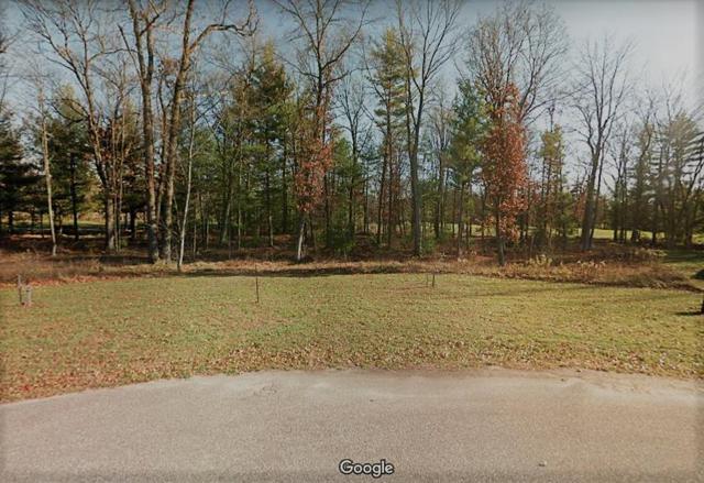 324 Pine Meadow Ct, Lake Delton, WI 53965 (#1849780) :: Nicole Charles & Associates, Inc.
