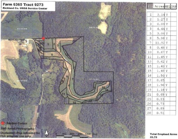 93.32 Ac Spencer Hill Rd, Willow, WI 53924 (#1852091) :: Nicole Charles & Associates, Inc.